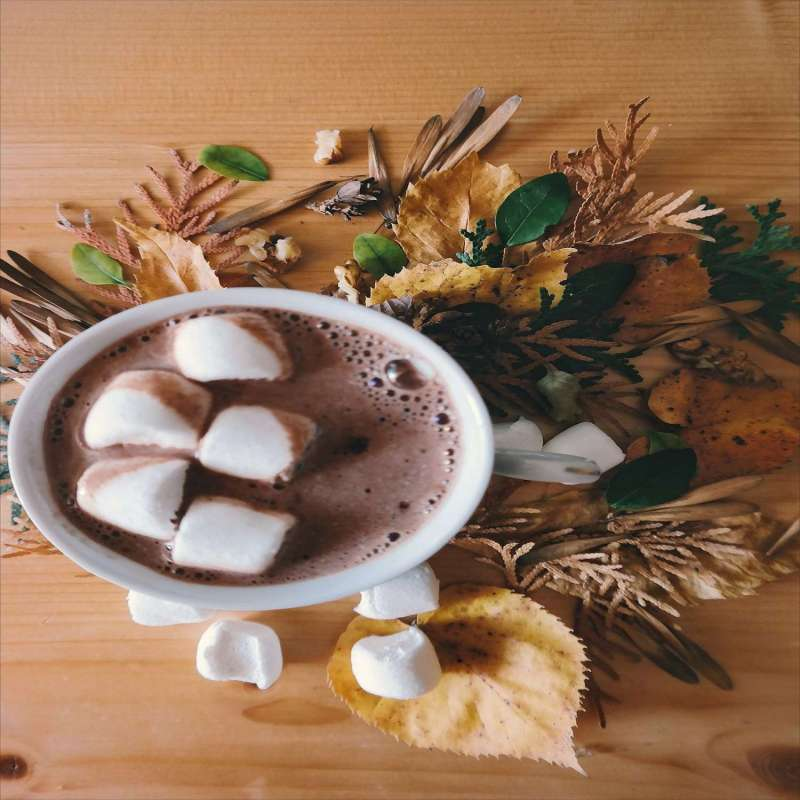 Cacao Seagull Fraise menthe