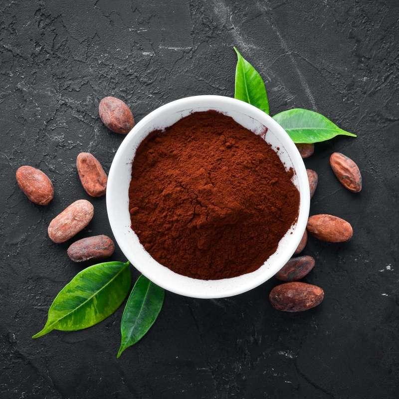 Cacao Bio Nature Choc Shark