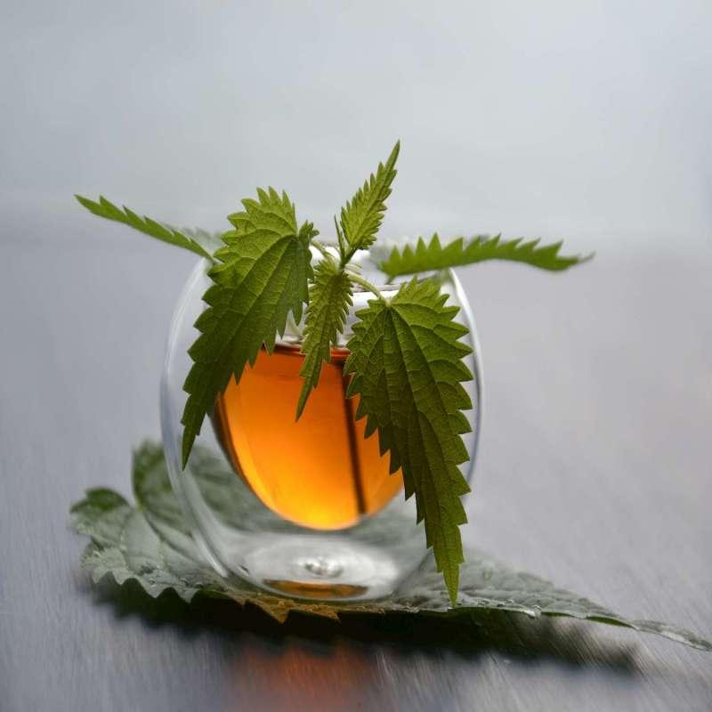 Vente de tisane pour la détoxification du foie